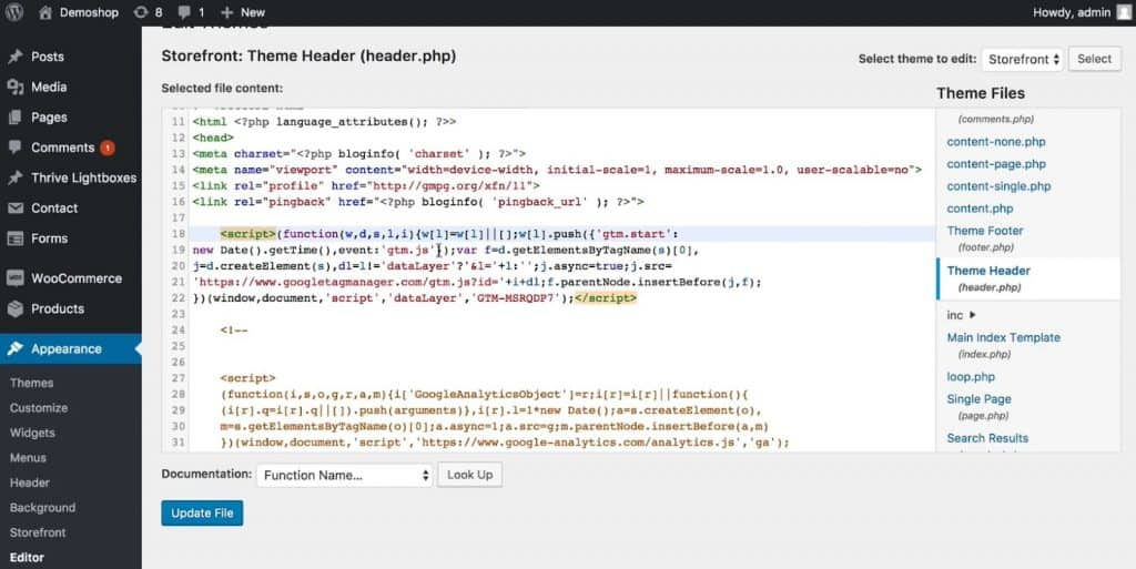 Google Tag Manager script in the Theme Header file of WordPress