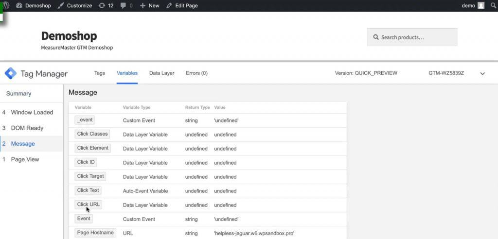 Variables in the Preview mode of Google Tag Manager